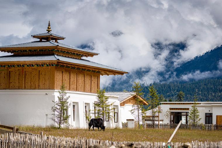 西藏林芝鲁朗度假酒店-7