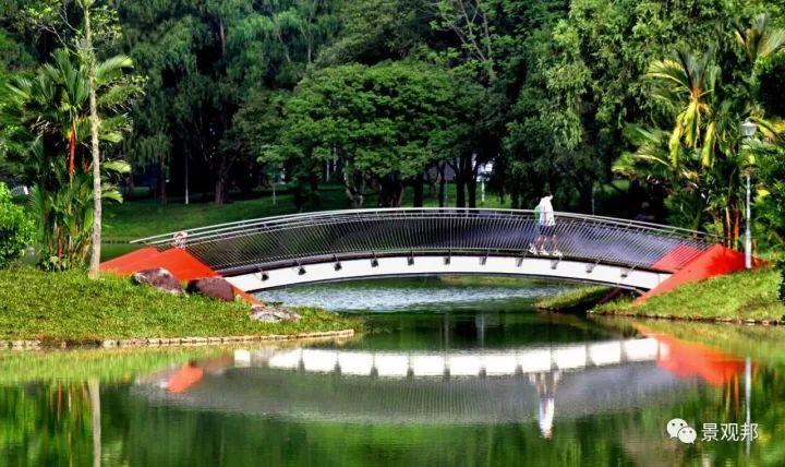 各种各样的景观桥_33