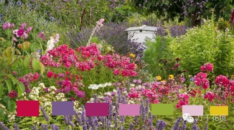 教你如何进行花境中的色彩配置-007.jpg