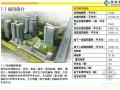[衡阳]城市综合体项目销售执行报告(90页)