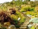处理坡地景观高逼格方法,种草!种草!!