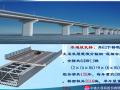 [中铁大桥局]港珠澳大桥施工技术研讨会(共77页)