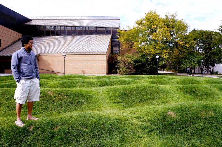 美国绿色波形草坪-8
