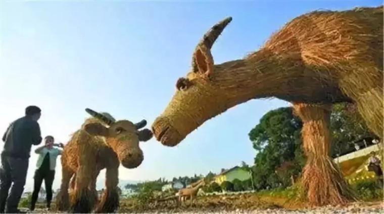 乡村景观性价比最高的创意玩法!_4