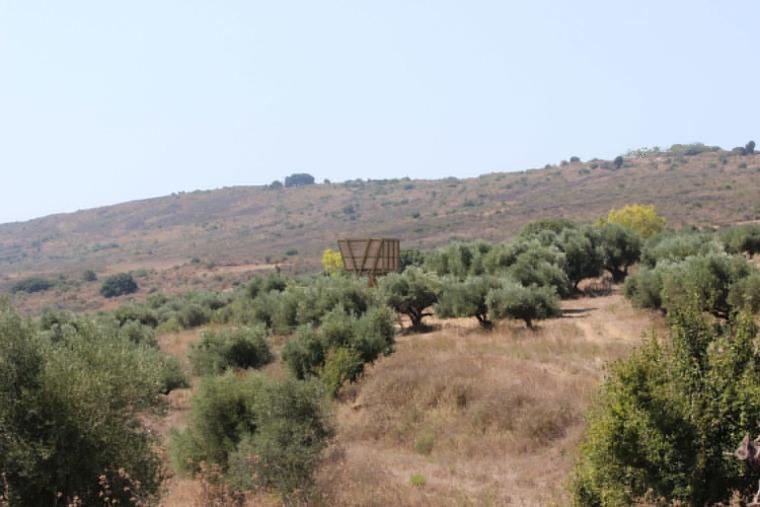 希腊Tragata新型瞭望台-2
