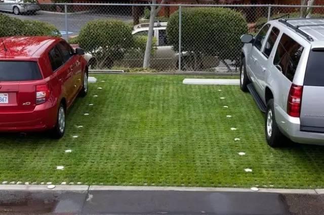 停车场也玩生态_25