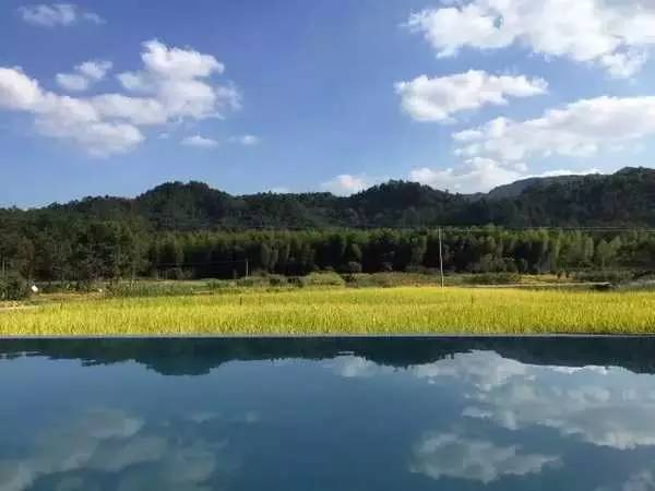农田,才是最奢华的风景_2