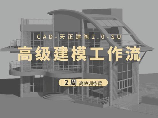高级建模工作流训练营(CAD、天正、SU)