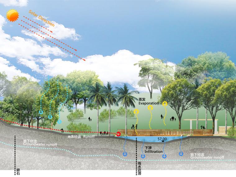 海绵公园-剖面图PSD分层素材