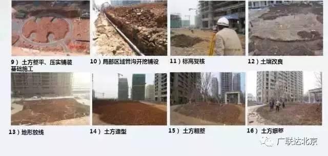 景观工程施工经验总结_4