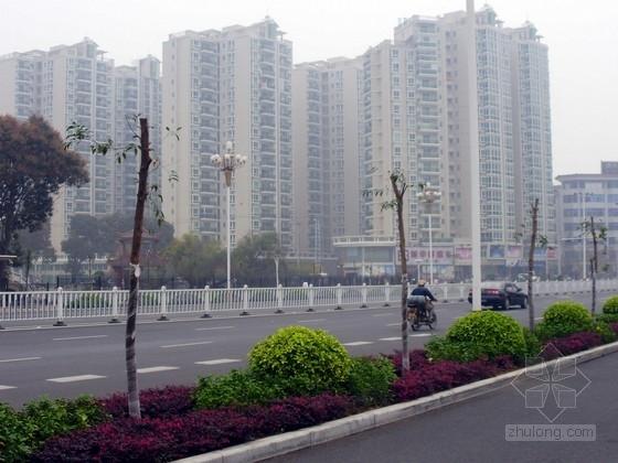 [重庆]山区城市路网规划工程次干道全套施工图设计(道路排水、照明、TBS生态护坡)