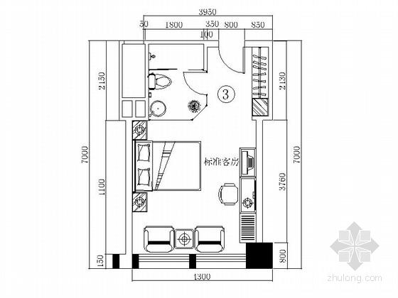 某时尚大酒店3号标准客房装修图