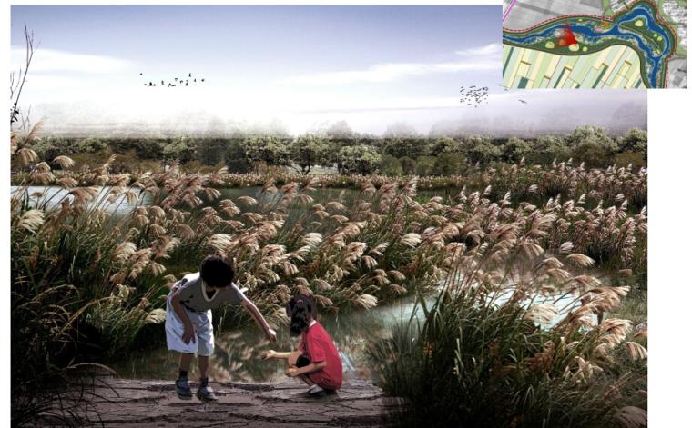 [辽宁]国家试点湿地公园景观规划设计文本-儿童活动湿地效果图
