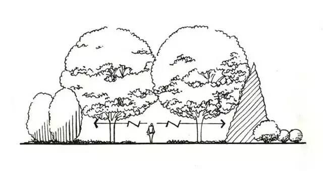最全植物设计总则·干货_10