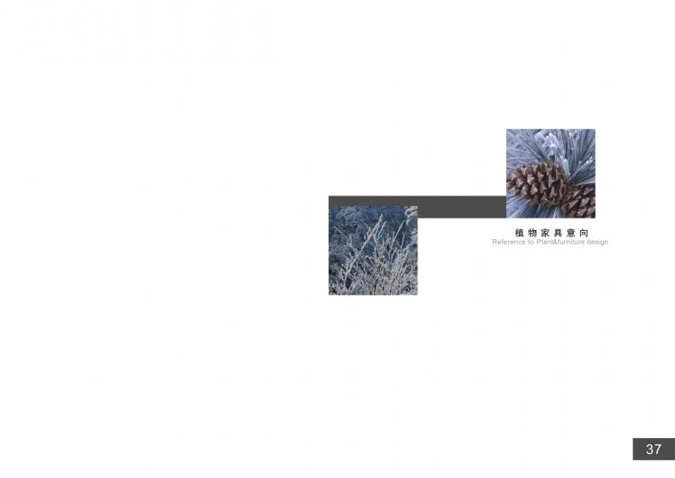 君子园景观设计_36