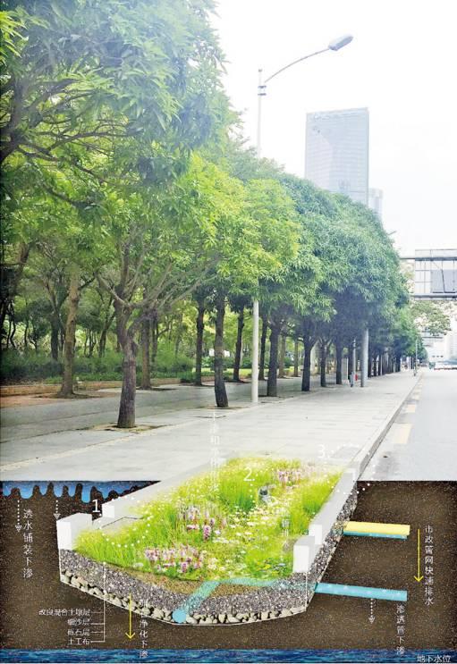 24种海绵城市设计措施全图解!_17