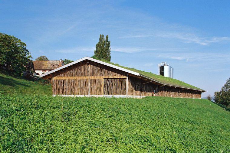 瑞士柴火棍下的丘陵牛舍