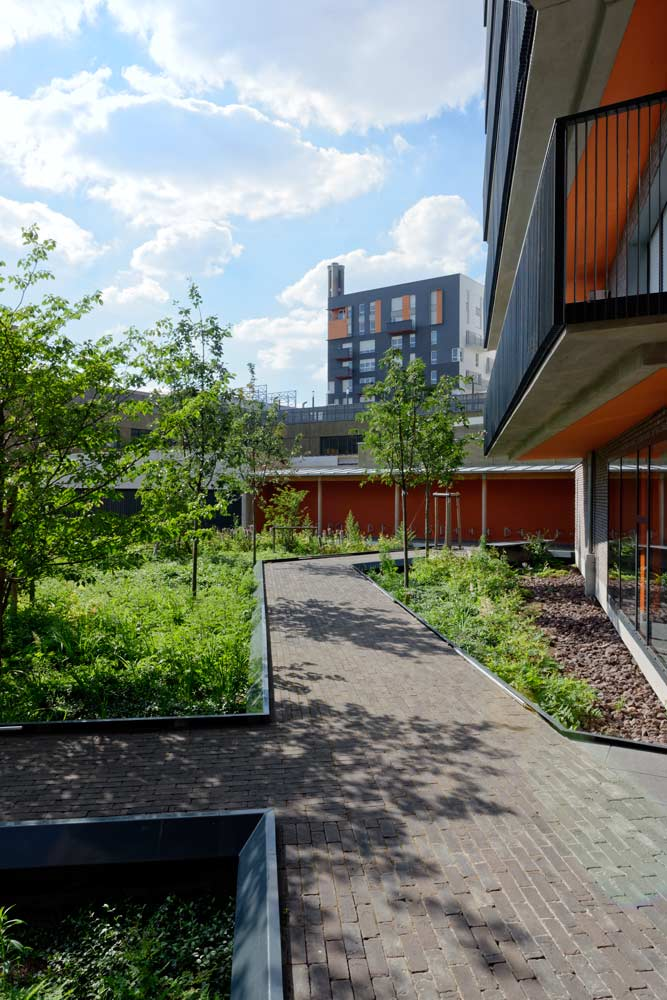 法国Docksde住宅景观-7