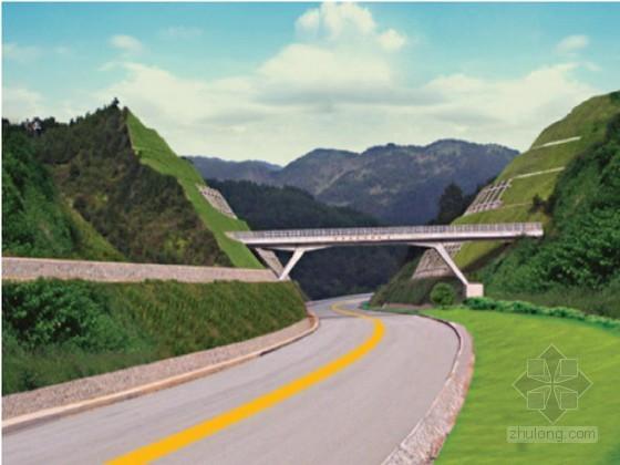 [湖北]公路桥梁现浇箱梁施工安全专项方案56页(满堂式碗扣支架 竹胶板)