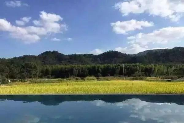 乡村景观|乡村景观是这么设计的_3
