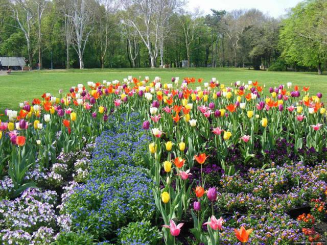 外国的园林艺术一定要看!_2