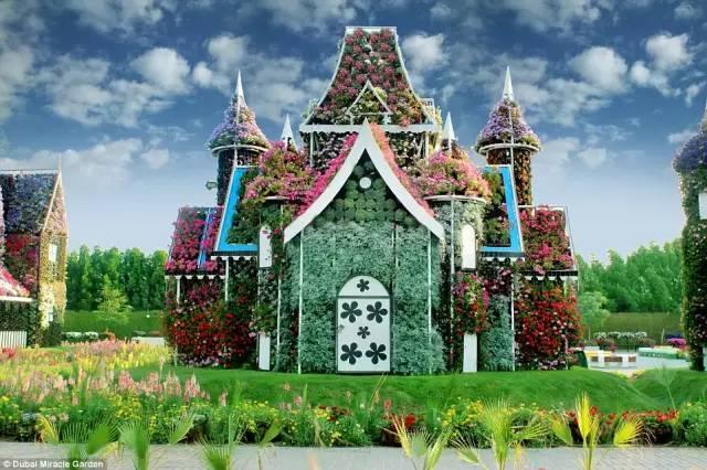 迪拜的花卉展览,全世界规模最大!你肯定没看过!_14
