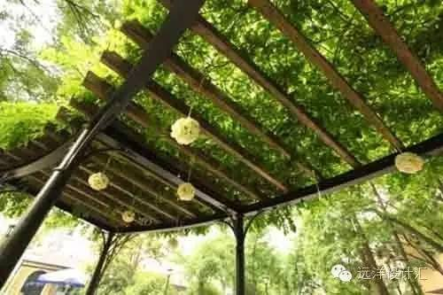 一个会种树的设计师,住宅每平方溢价3000元_34