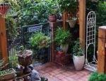 庭院这么铺装,景观设计才美!