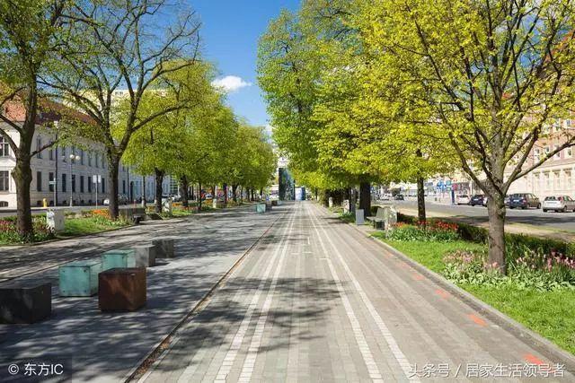 市政道路绿化工程施工具体方案和措施_9