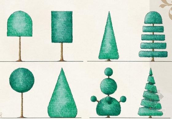 植物修剪形态