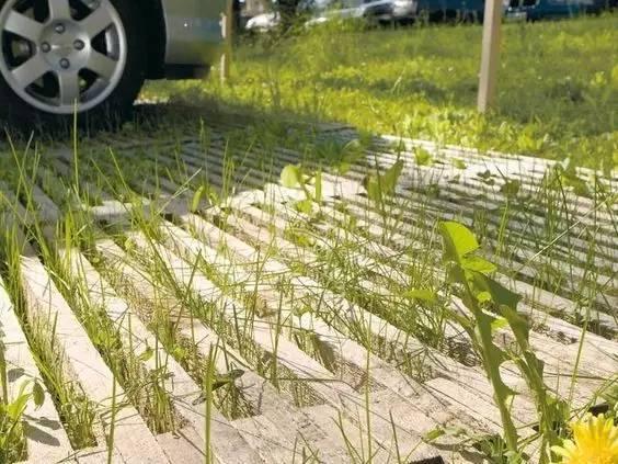 停车场也玩生态_5