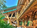 很有个性的竹建筑