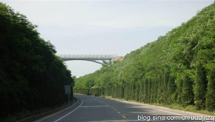 55km道路电力工程创优施工实施细则(34页)