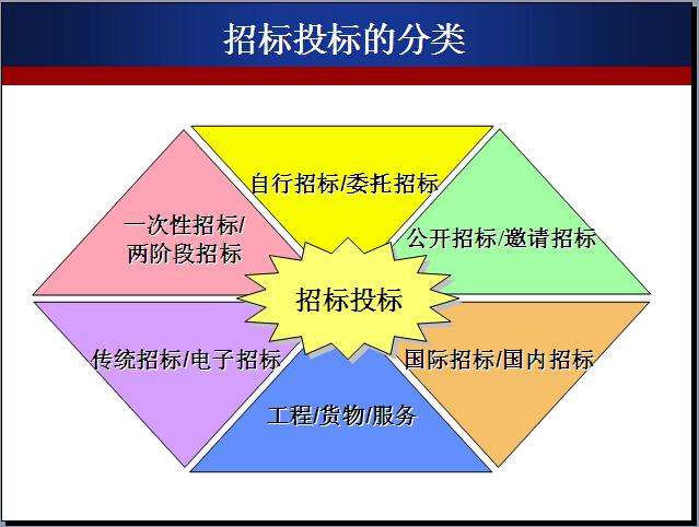 工程项目招投标与合同管理(164页)_3