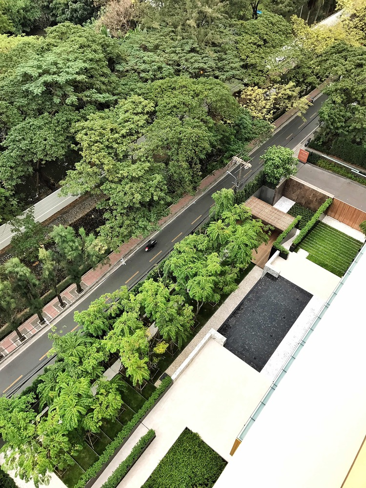 泰国空中现花园公寓-4