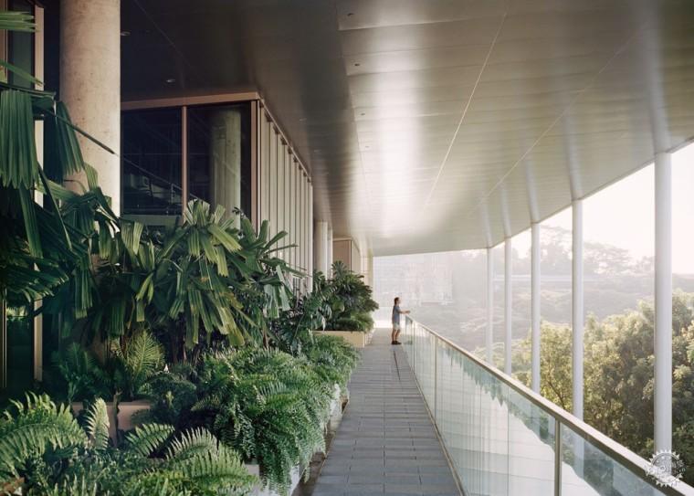 净能耗为零的开放建筑,为节能设计提供全新思路