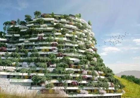 今年,在南京,这座建筑将变成森林_6