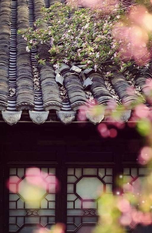 花窗之美,穿越千年而来_2
