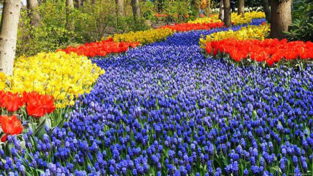 外国的园林艺术一定要看!_9