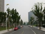 城市道路设计之横断面综合布置