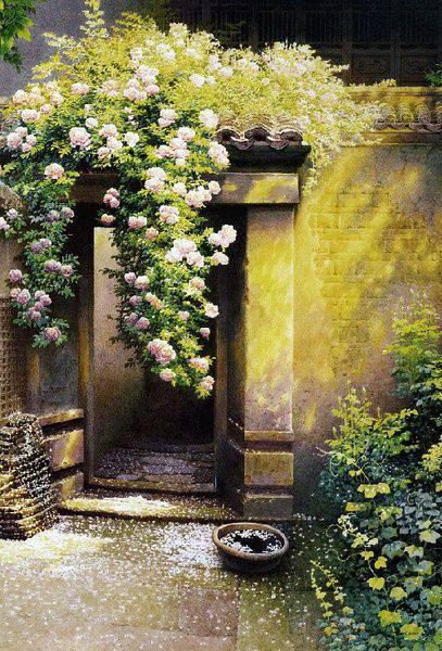 想要一个小院子,花开花落一辈子_4