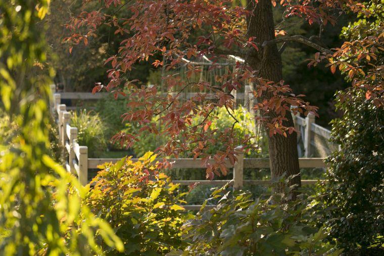 生态池塘边的庄园-6