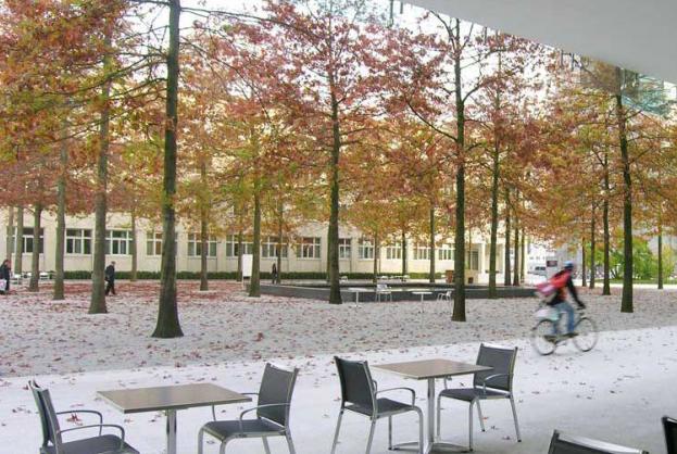 [上海]现代风格自然生态大学校园景观规划设计方案_8