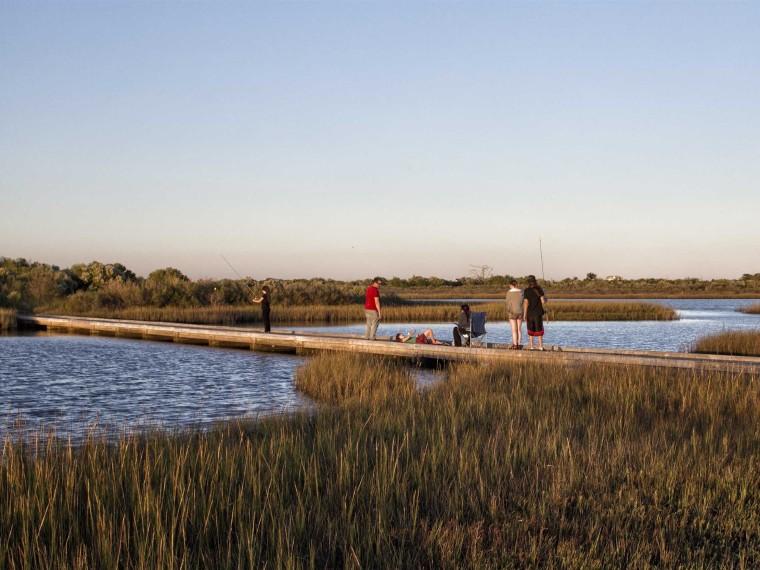 美国加尔维斯敦岛国家生态湿地