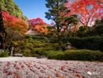 日本15个最美枯山水庭院