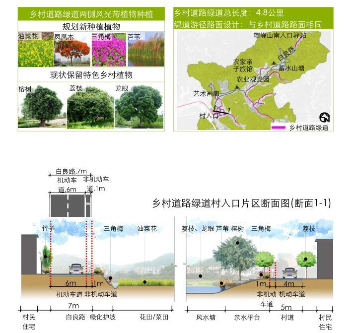 [广东]美丽乡村示范点某镇村庄详细规划景观方案设计PDF(313页)-乡村道路绿道