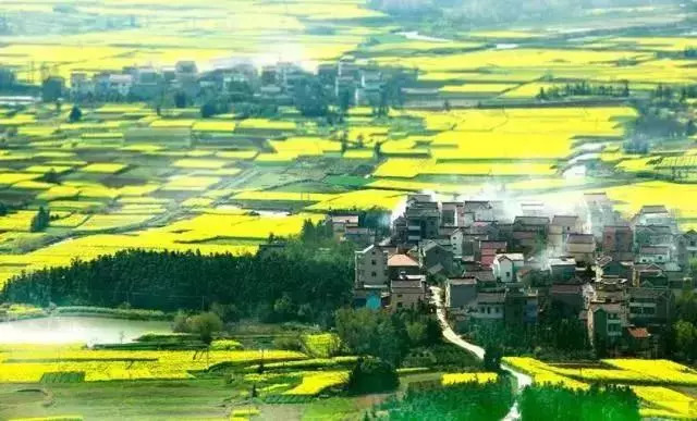 """中国第一个""""国际慢城""""——高淳县桠溪镇"""