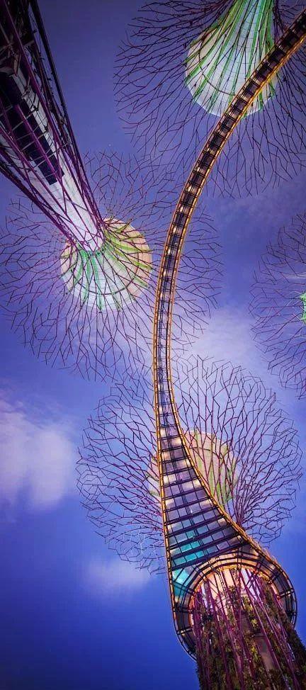 新加坡经典高端景观考察活动_88