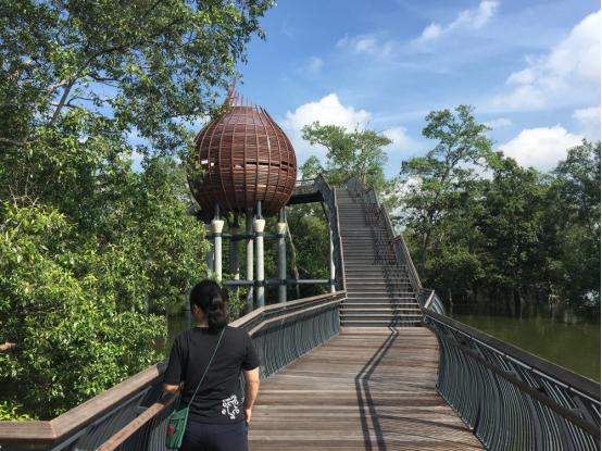 案例分享|新加坡双溪布洛湿地公园景观设计_2