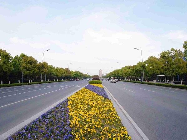 市政道路改造工程可行性研究报告(共99页)